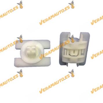 ro12443-b-set-grapas-10-piezas-fijacion-molduras-laterales-renault-clio-ii-oem-7703077362