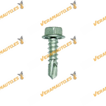ROC60165-Tornillo-de-Montaje-Autoperforante-para-Chapa-10-Piezas