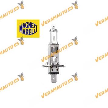 Lámpara Halógena H1 12V 55W