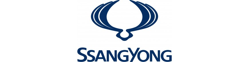 New parts and replacements for Ssangyong, window operators, mirrors, lights,